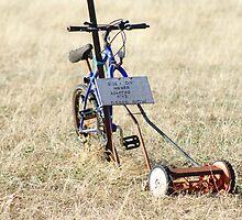 Ride on Mower by Arthur Koole