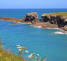Summer Has Arrived In Cornwall by rumisw