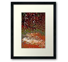 Earth Colours Framed Print