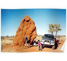 Giant Termite Mound Poster
