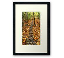Kingdom of dead leaves Framed Print