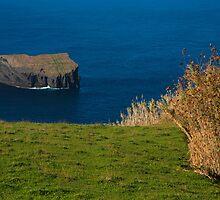 Islet, Azores by Gaspar Avila