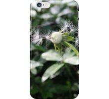 Dispersal iPhone Case/Skin