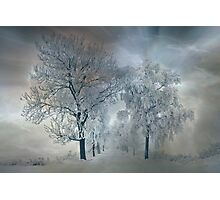 Winter's magic Photographic Print