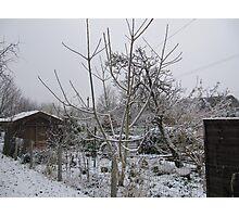 Cork Snow Photographic Print