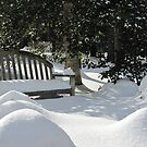 cold bench by ANNABEL   S. ALENTON