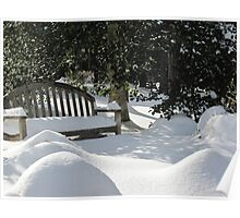 cold bench Poster