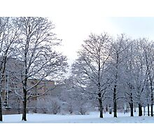 Wintery Suburbia Photographic Print