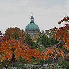 Parliament Building Victoria BC in Autumn by AnnDixon