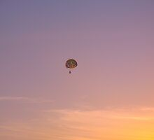 Flying into Oblivion by MarianBendeth