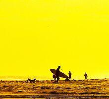 Seaside Silhouette by Scott Evers