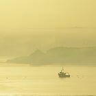 Morning mist, Cork Harbour by lukasdf