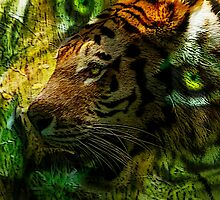 Love of Tigers by GlennB