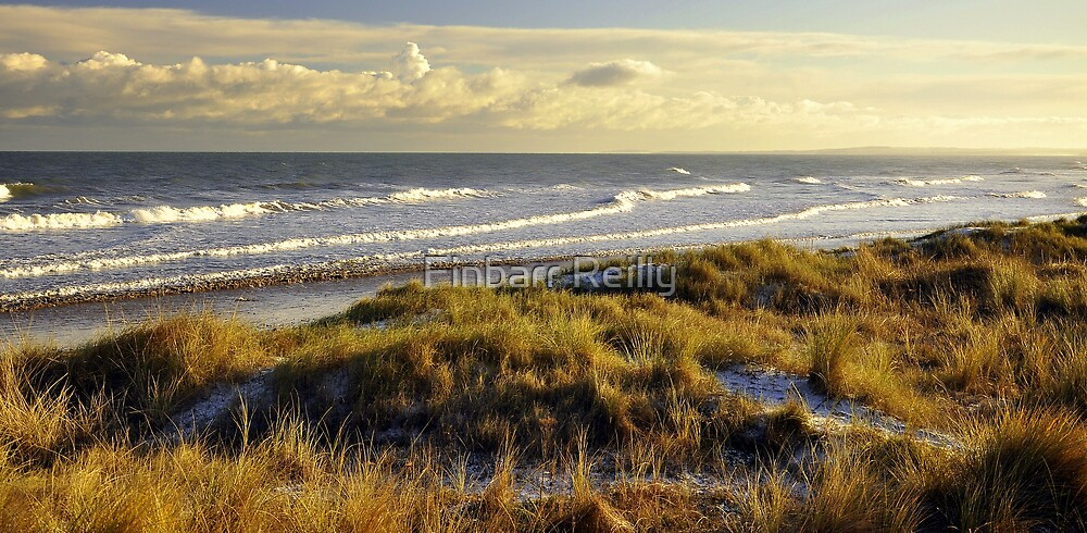 Mornington beach, Co Meath. by Finbarr Reilly