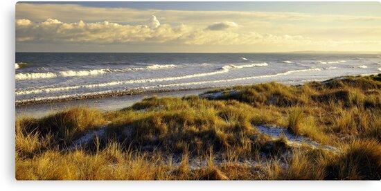 Mornington beach, Co Meath. by Finbarr Reilly