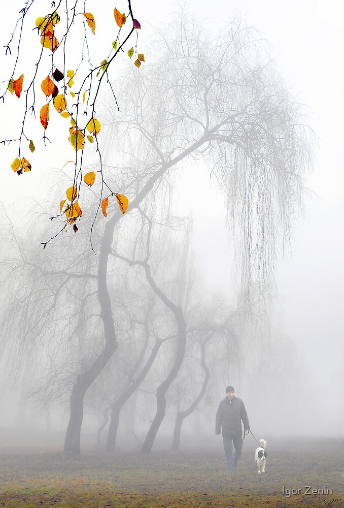 Morning Stroll by Igor Zenin