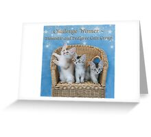 Banner Pedigree and Domestic Cats Greeting Card