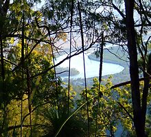 River Bend - Fitzroy River Qld by PhoenixArt