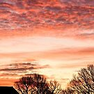 Red Clouds Panoramic by jskouros
