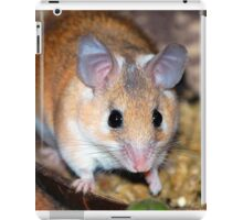 Curious Hamster iPad Case/Skin