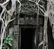 Ta Prohm Temple Door II - Angkor, Cambodia. by Tiffany Lenoir