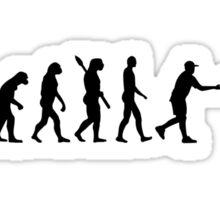 Evolution Disc golf Sticker