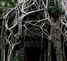 Ta Prohm Temple Door - Angkor, Cambodia. by Tiffany Lenoir