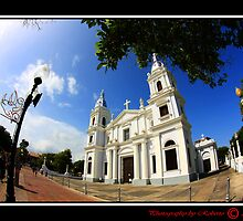 Ponce Cathedral by Roberto Perez
