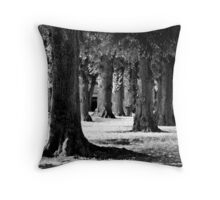 Ancestors Throw Pillow