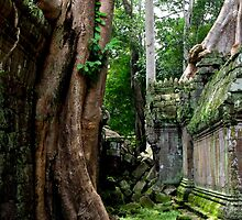 Ta Prohm Temple IV - Angkor, Cambodia. by Tiffany Lenoir