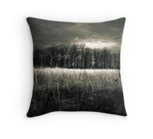 Afternoon on the prairie Kitty Todd Nature Preserve Throw Pillow