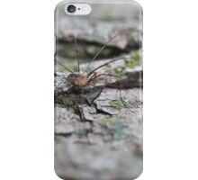 Daddy or Mommy long legs? iPhone Case/Skin