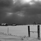 Snow Storm by Chintsala