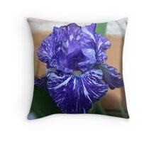 An Iris Close-Up Throw Pillow
