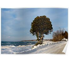 Kincardine In The Distance Poster