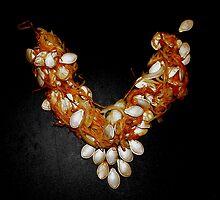 """Squash - tume "" Jewellry by Linda Bianic"