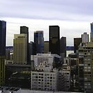 Seattle's City Skyline by Tori Snow