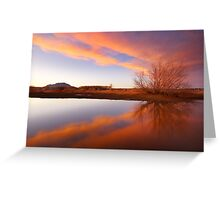 Tree Flares Greeting Card