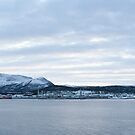 Norwegian vista near Trondheim by David Burren