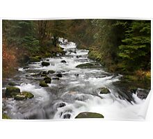 Sweet Creek  Rapids..#1 Poster
