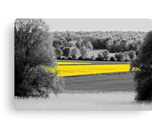 B&Y 17 Canvas Print