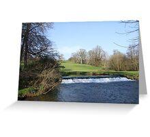 Doneraile Wildlife Park, Cork Greeting Card