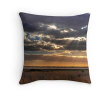 Salt Pan - Salt Creek, Limestone Coast, South Australia Throw Pillow