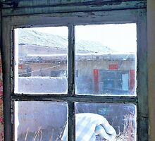 Looking Out the Kitchen Door in February  by Ethna Gillespie