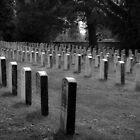 Gettysburg Graveyard  by Matthew Hutzell