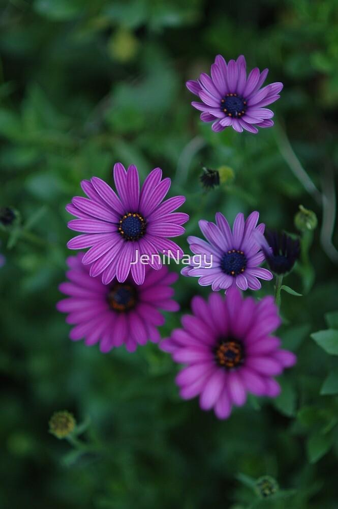Garden Flowers by JeniNagy
