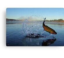 Leap For Joy Canvas Print