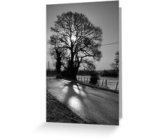 Going for a drive?... Greeting Card
