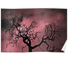 Tree in Silhouette with Texture Poster