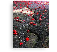 The Petals of Your Fallen Flowers. Canvas Print